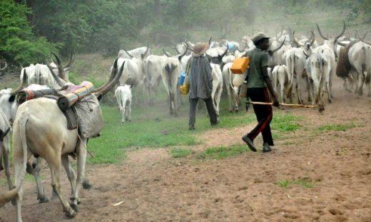 Again, herdsmen attack farmer in Oyo State